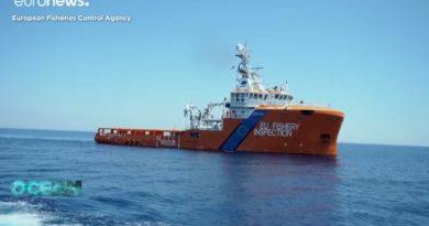 Αδριατική: Αύξηση των αλιευτικών αποθεμάτων χάρις σε ζώνες απαγόρευσης αλιείας