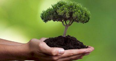 Έργα βιώσιμης ανάπτυξης από τον Δήμο Πάρου