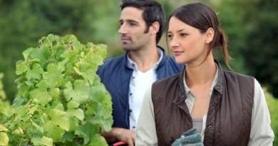 Νέοι Αγρότες: Εξετάζεται ένταξη με έως 35.000 ευρώ πριμ