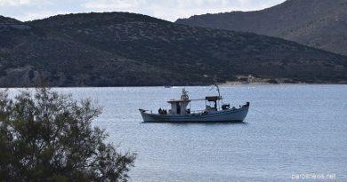 Νέο ΦΕΚ: παραμένει το ίδιο καθεστώς σε ψάρεμα, ψαροτούφεκο και σκάφος έως τις 19 Απριλίου