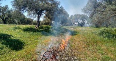 Απαγόρευση καύσης σε δασικές και αγροτικές εκτάσεις από τις 15 Απριλίου