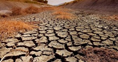 Απειλή ερημοποίησης για το 50% του ελλαδικού χώρου, στην επόμενη 20ετία