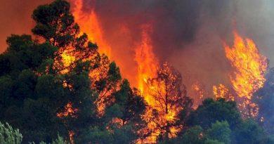 Αρχ. Ολυμπία: Οι φλόγες στη ΔΟΑ- Συγκλονιστικές εικόνες από drone